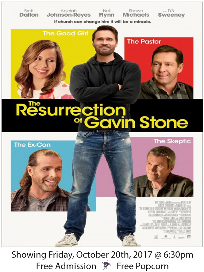 gavin stone for website